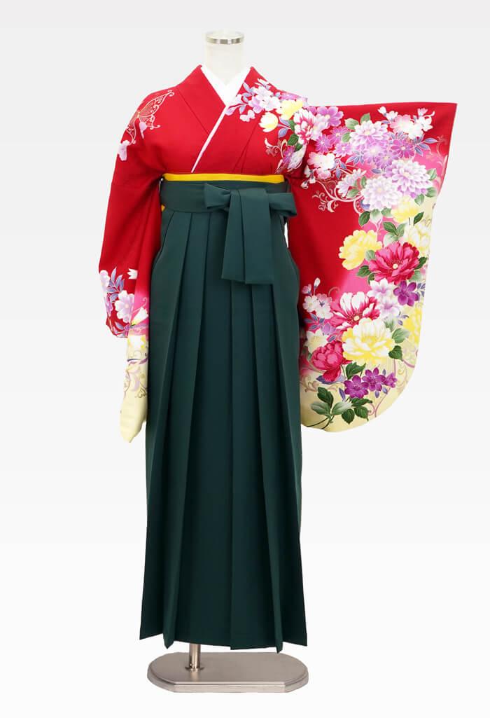 【着物】ハナエモリ赤地四季花色どり+【袴】フカミドリ