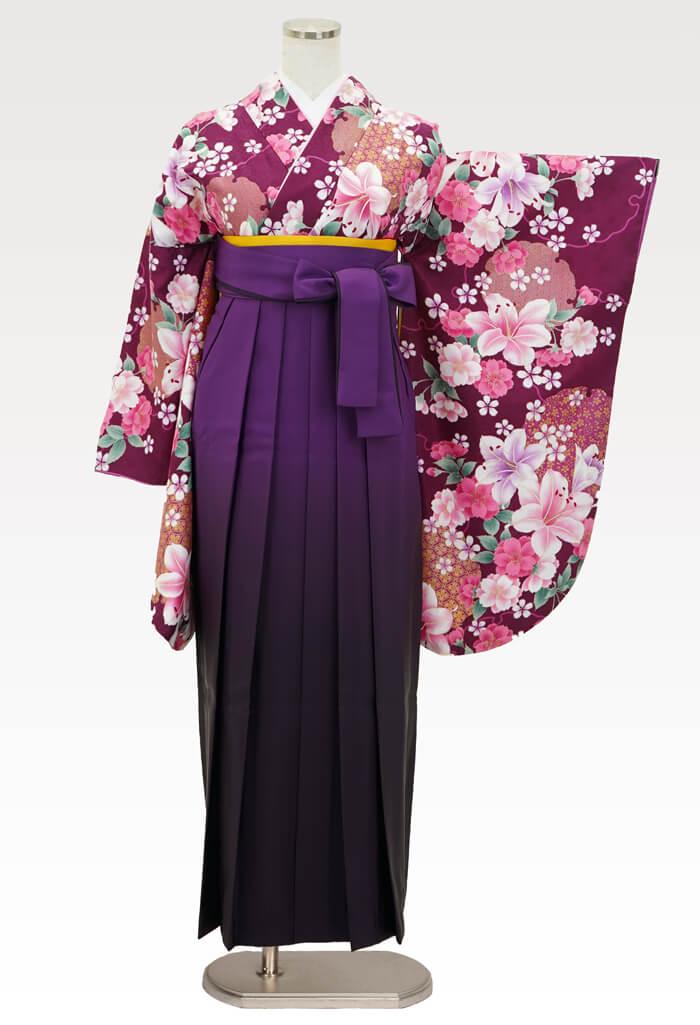 【着物】赤紫百合に桜+【袴】ムラサキボカシ