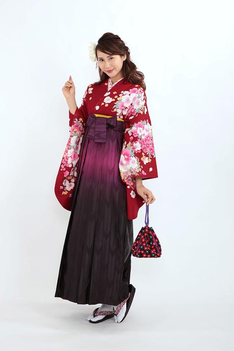 エンジ胡蝶蘭とHL紫ぼかしのサムネイル