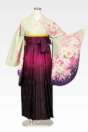 若草色牡丹桜とムラサキぼかし