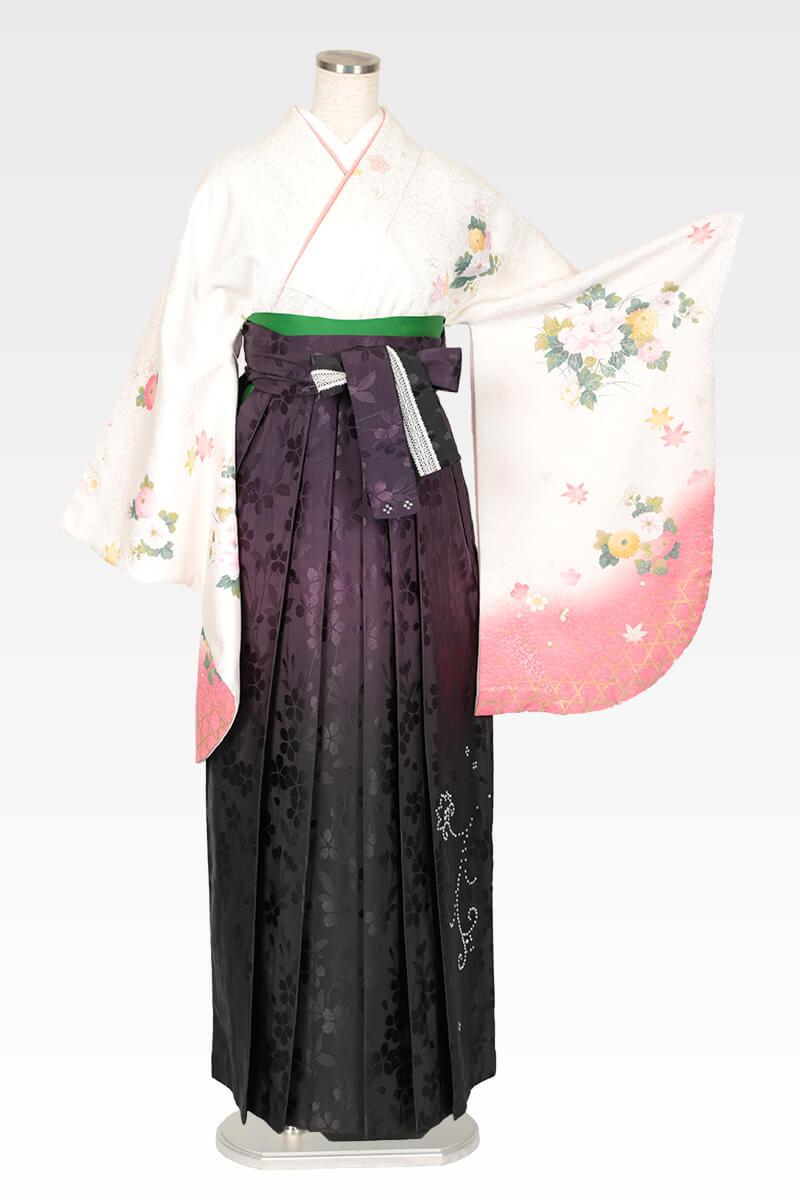 レンタル着物:白地に菊に牡丹+レンタル袴:ムラサキぼかしスワロ桜地のコーディネート