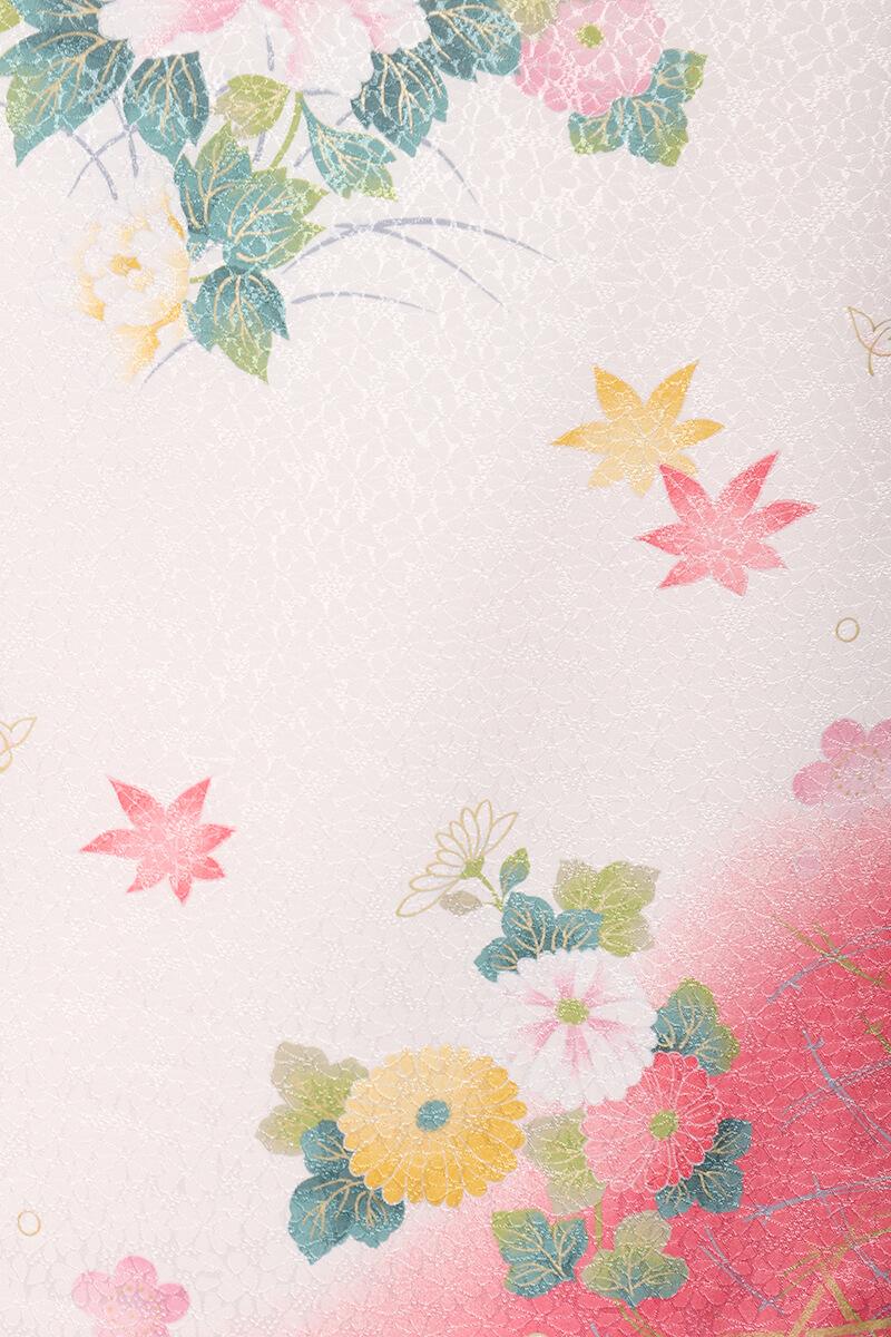 レンタル着物:白地に菊に牡丹詳細