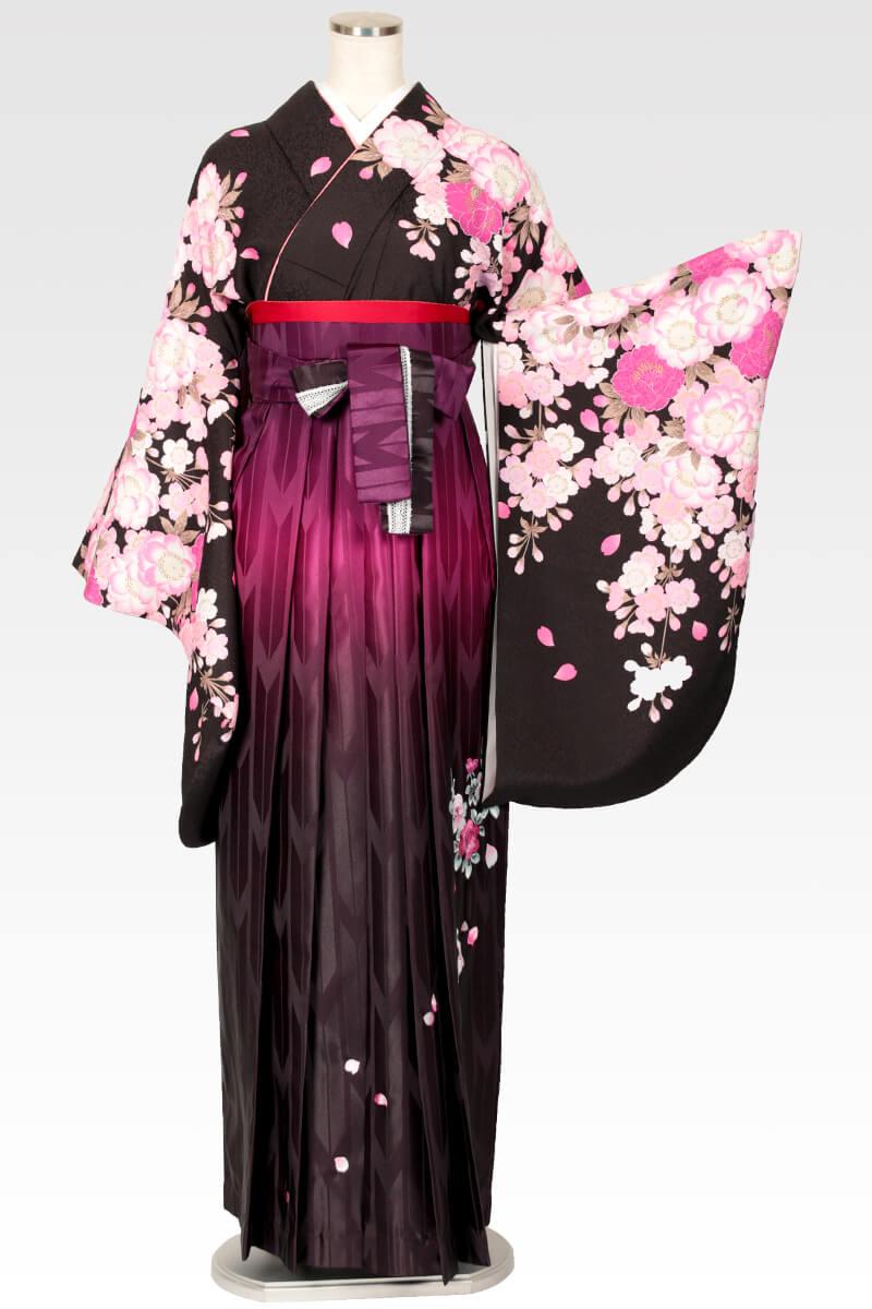 レンタル着物:ナカノ春黒+レンタル袴:ムラサキぼかしバラ刺繍のコーディネート
