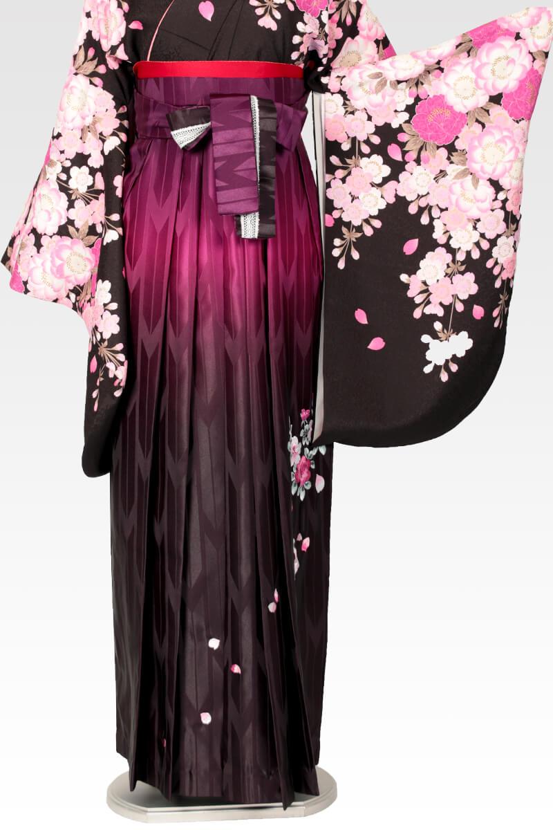 レンタル袴:ムラサキぼかしバラ刺繍