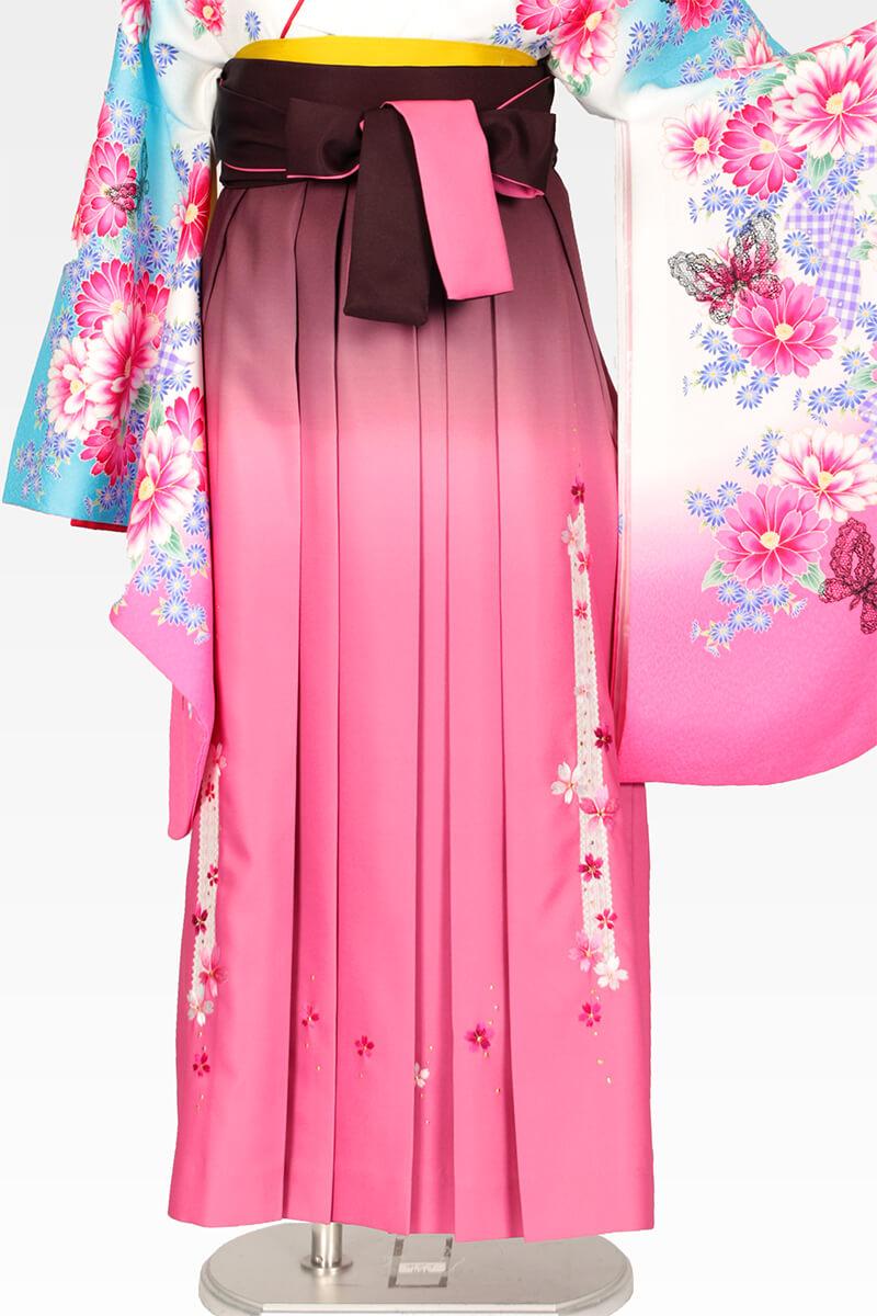 レンタル袴:ピンクボカシレース桜
