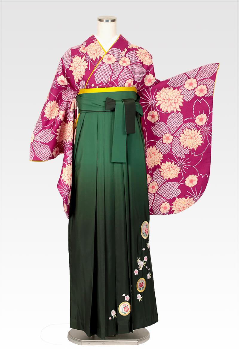 レンタル着物:ムラサキ疋田小紋+レンタル袴:グリーンボカシ撫子に橘のコーディネート