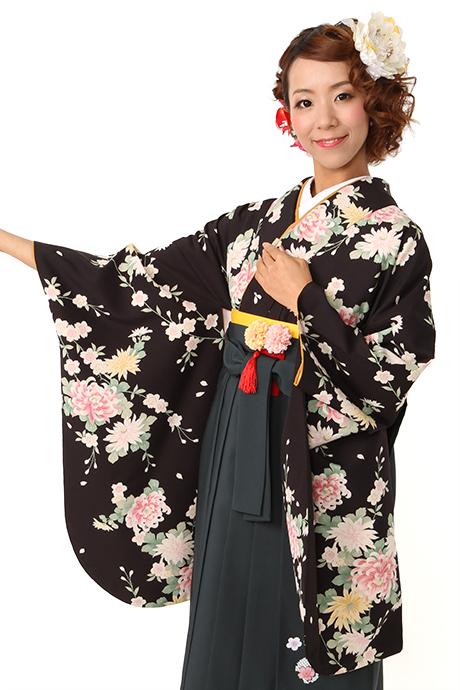 【着物】黒シダレザクラに乱菊