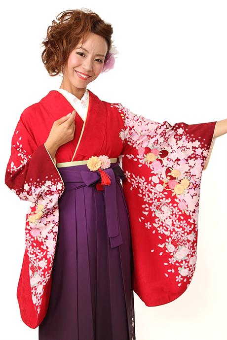 【着物】赤サクラ小菊チラシ