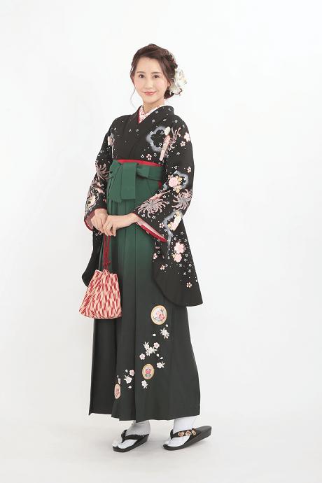 レンタル着物:黒地に大菊小菊+レンタル袴:グリーンボカシ撫子に橘の全体画像