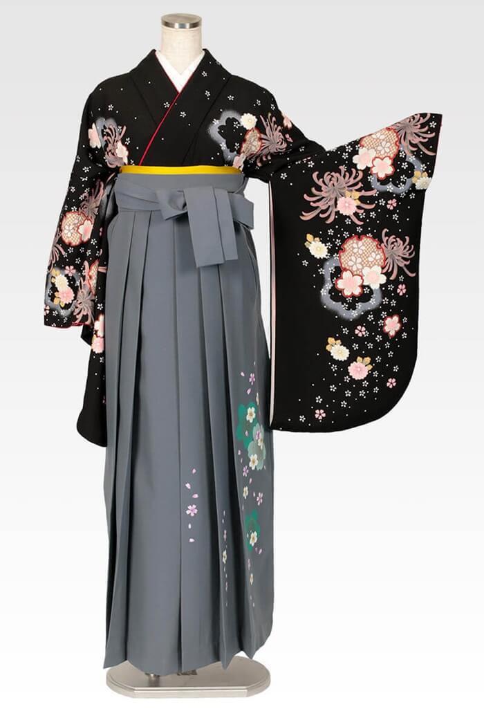 【着物】黒地に大菊小菊+【袴】コンネズ友サクラ