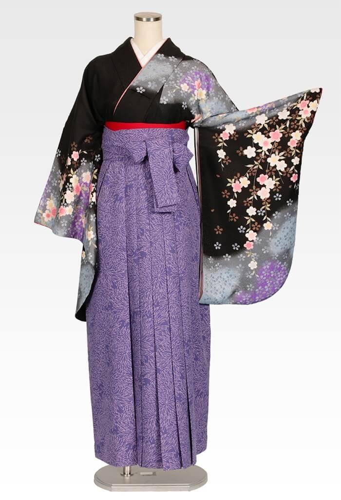 【着物】黒にムラサキシダレサクラ+【袴】総柄ブルー