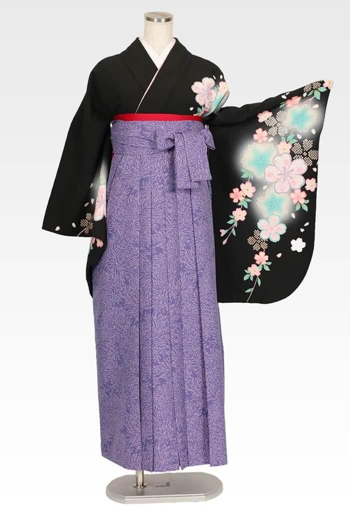 【着物】黒地に疋田シダレサクラ+【袴】総柄ブルー