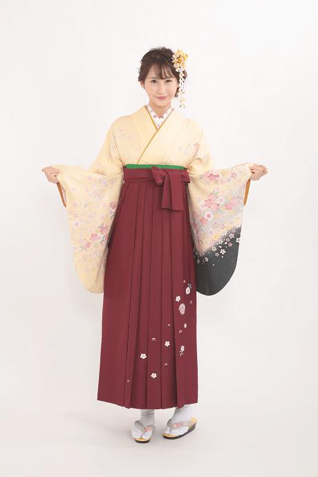 レンタル着物:クリーム黒袖小ザクラ集+レンタル袴:エンジ友疋田桜の全体画像