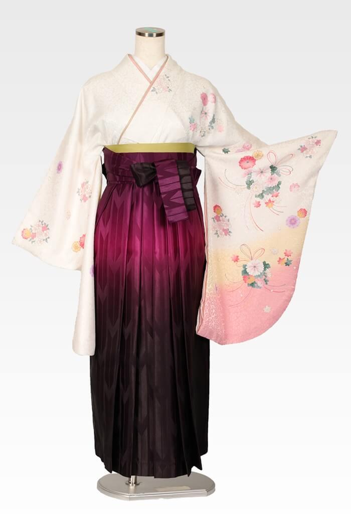 【着物】白地に束ね菊サクラ+【袴】ムラサキボカシ