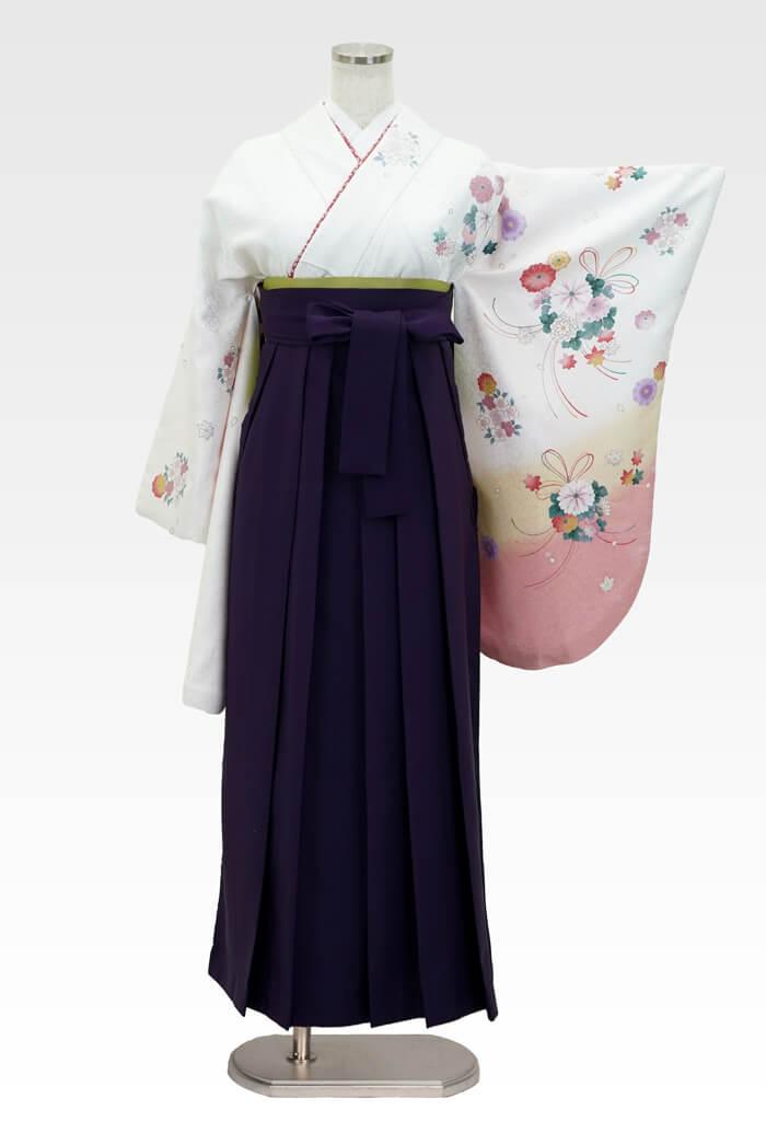 【着物】白地に束ね菊サクラ+【袴】ムラサキ