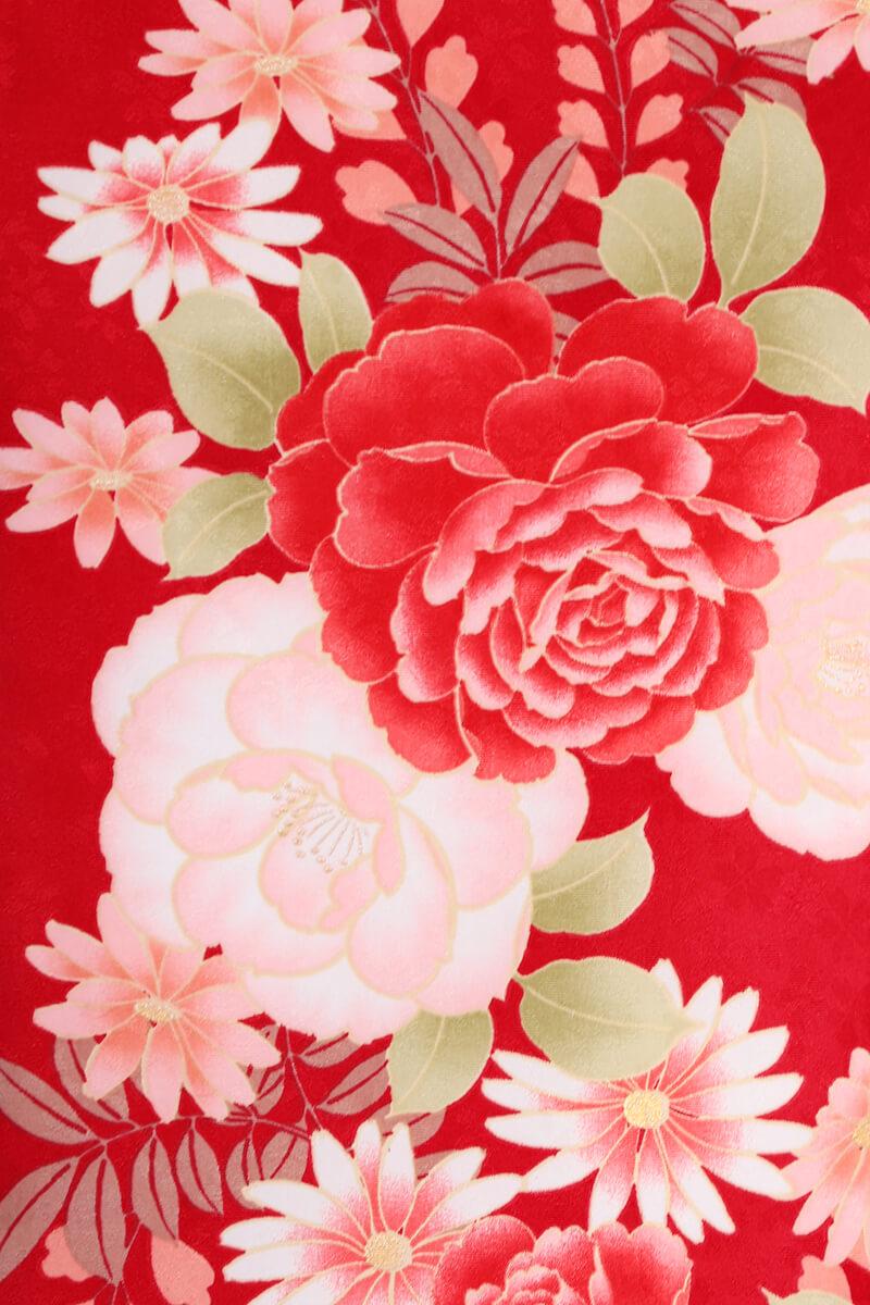 レンタル着物:赤地バラに藤詳細