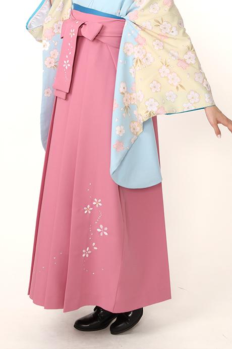 【袴】ピンクシシュウ桜